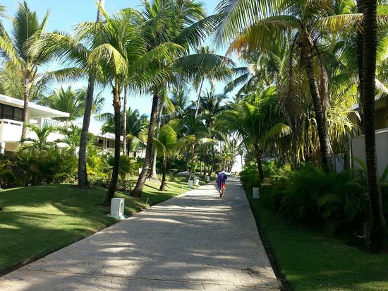 Paradisus Punta Cana: Walkways...not a bad room at the resort