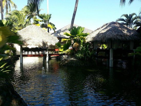 Paradisus Punta Cana: More views from the dinning options