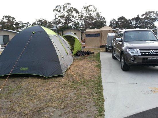 Hobart Airport Tourist Park: Campsite view