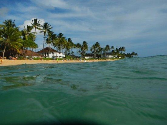 Sheraton Kauai Resort: Perfect beach