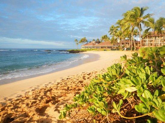 Sheraton Kauai Resort: Wow