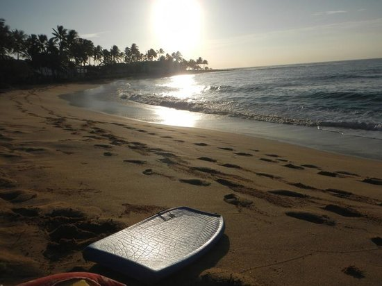 Sheraton Kauai Resort : Love this beach!