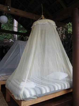 Los Naranjos Retreat:                   mosquito netted beds in the palapa closest to the water fall on property