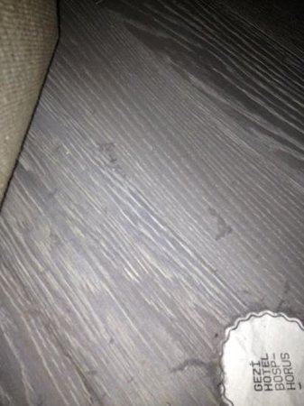 Gezi Hotel Bosphorus:                   more dust in the living room