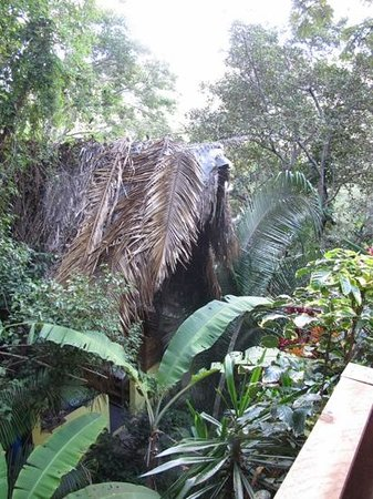 Los Naranjos Retreat:                   the shower palapa from the palapa nearest the on site falls