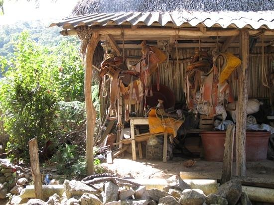 Los Naranjos Retreat:                   the hike to the water fall up river passed a tack shop