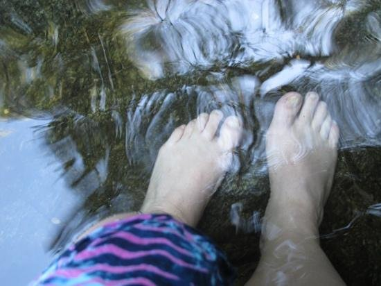 Los Naranjos Retreat:                   my feet in the pool of the falls on property; the reflections on the water swi