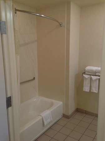 Hampton Inn & Suites San Jose: Handicap-accessible shower