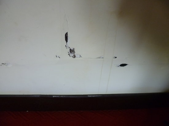 Mojo Guesthouse: Holes and cracks in bedroom wall