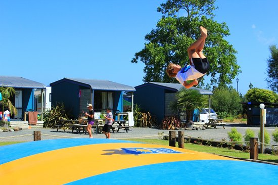 Coromandel TOP 10 Holiday Park: Coromandel TOP 10 deluxe cabin