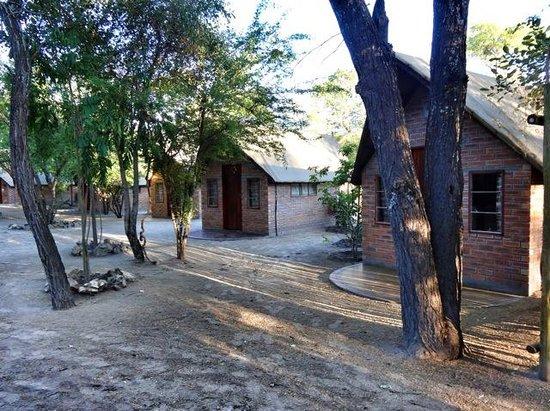 Sitatunga Campsite: upgrade cabin