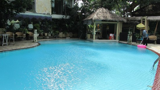 Bali Mystique Hotel and Apartments :                   Pool