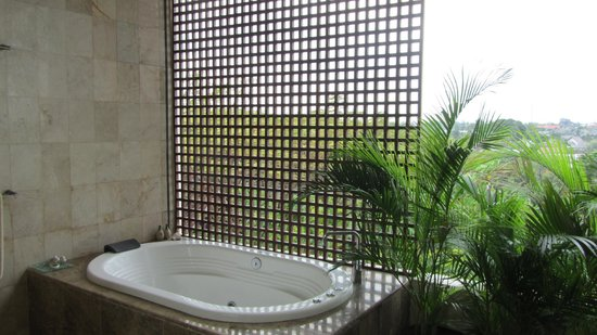 Bali Mystique Hotel and Apartments:                   Penthouse Bathroom