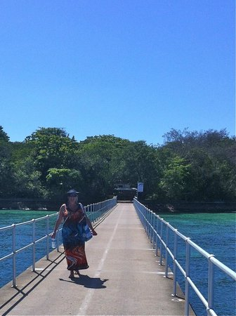 Green Island Resort:                   green island jetty