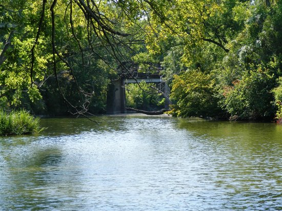 Mexia, TX: The Navasota river at Fort Parker state park