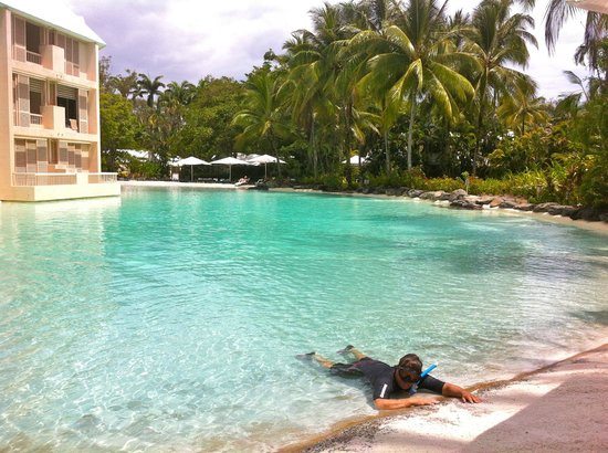 Sheraton Mirage Port Douglas Resort: pool and diver dan