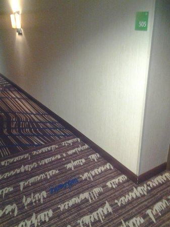 Holiday Inn San Francisco - Intl Airport : hallway very clean