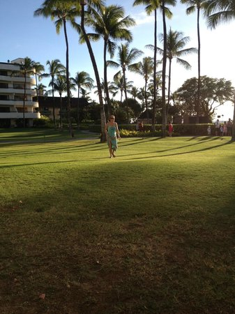 Sheraton Maui Resort & Spa:                   grounds