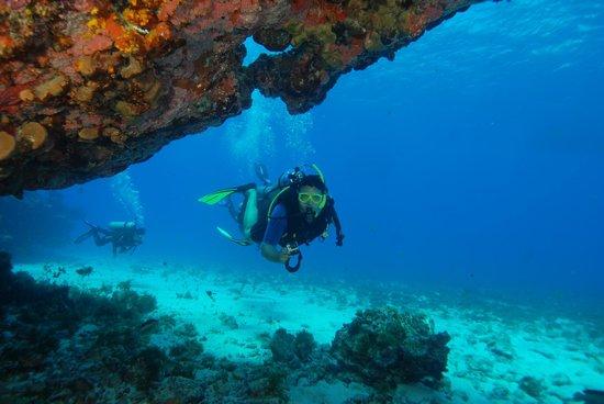 Atlantis Divers:                   Ilha do Meio Diuno