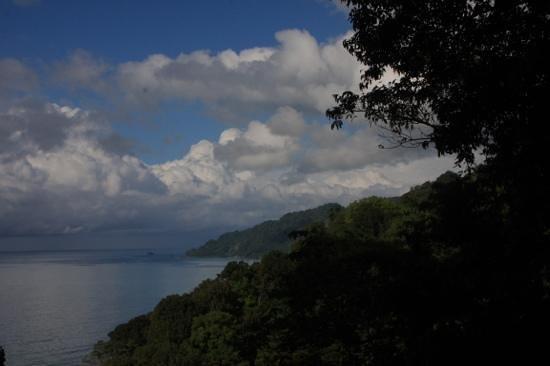 La Leona Eco Lodge: Aussichtspunkt vom Haustrail