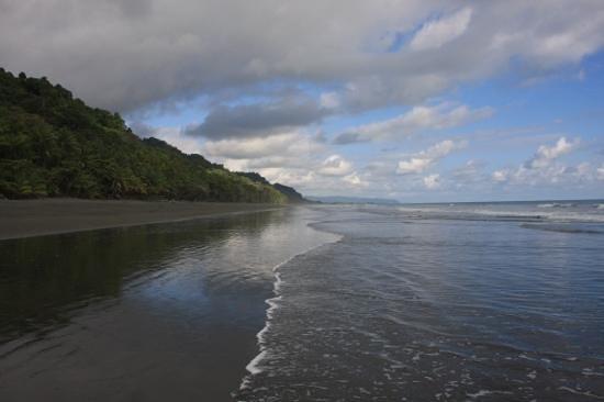 La Leona Eco Lodge: Der Strand direkt davor
