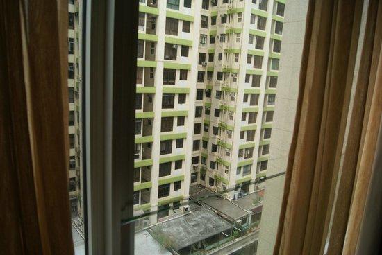 Butterfly on Prat: View of Prat Avenue from room