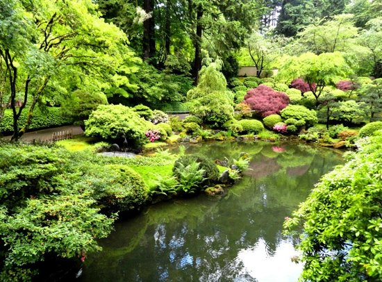 Large Waterfall Picture Of Portland Japanese Garden