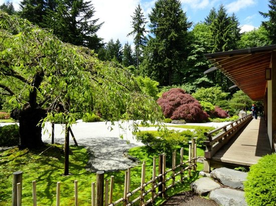 The famous cherry tree in bloom picture of portland japanese garden portland tripadvisor for Portland japanese garden admission