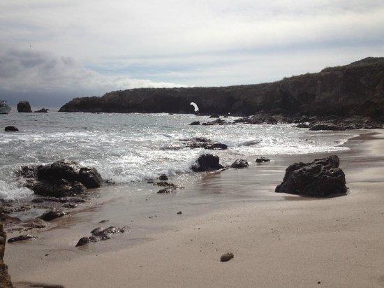El Jardin Yelapa:                   Marietta Island
