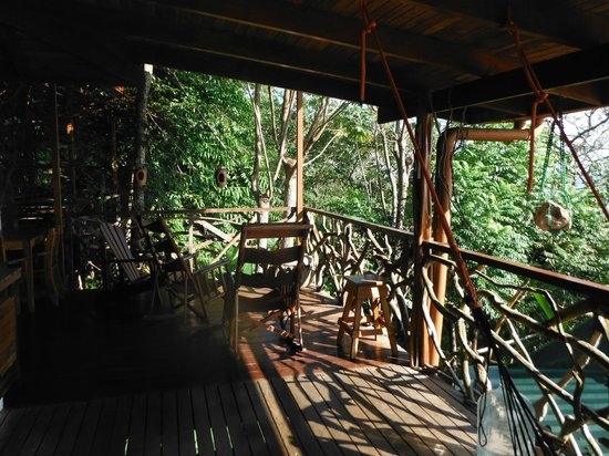 Lookout Inn Lodge:                   Where the monkeys visit