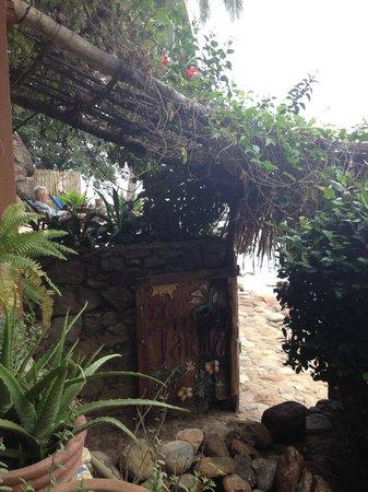 El Jardin Yelapa:                   Reading