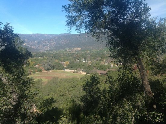 Ojai Retreat:                   View from the balcony