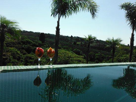 芒果谷飯店照片