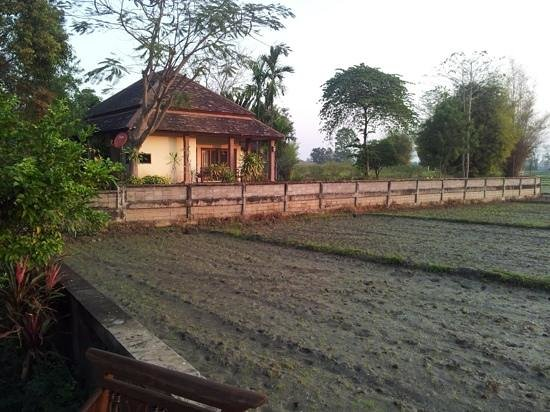 Palm Spa Village Resort :                   Our villa by the rice field