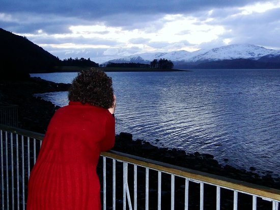 Loch Linnhe Waterfront Lodges: Photographing sea birds and sunset from balcony.