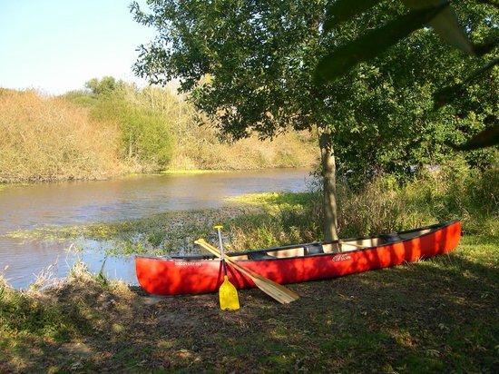 L'Hôt'berge de Gannedel : activité canoe nature au depart du gite, Redon, Bretagne