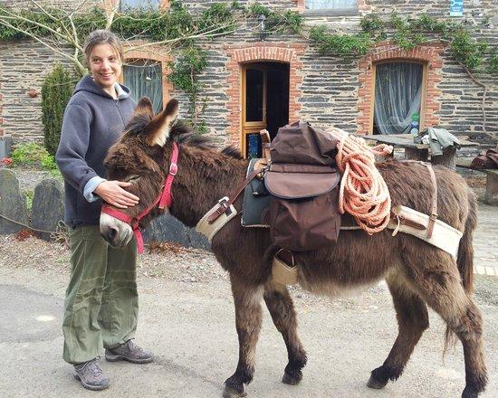 L'Hôt'berge de Gannedel : Activite nature, balade avec ane au depart de l'hotel ecologique pres de redon, Bretagne