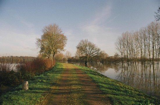L'Hôt'berge de Gannedel : activite nature, randonnee sur les halages, Vilaine et canal de nantes à brest
