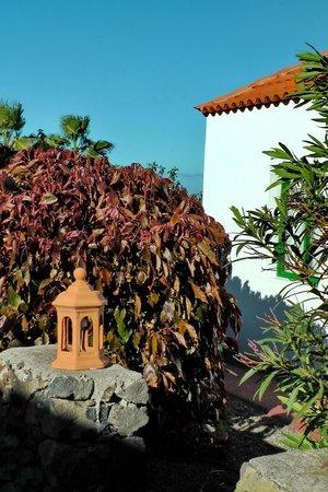 La Plantacion: Garten