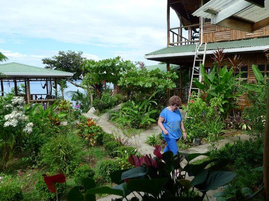 Ranchitos Las Cotingas: Precioso jardín