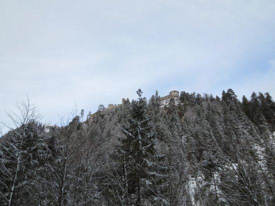 Landhaus Panorama:                   Вид из номера