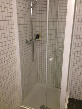 Hotel Le Faucigny:                   shower