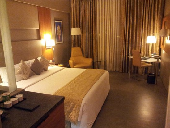 Royal Orchid Central, Vadodara:                   room1