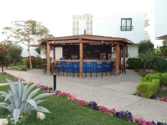 Viking Club:                   Hotel Bar Area