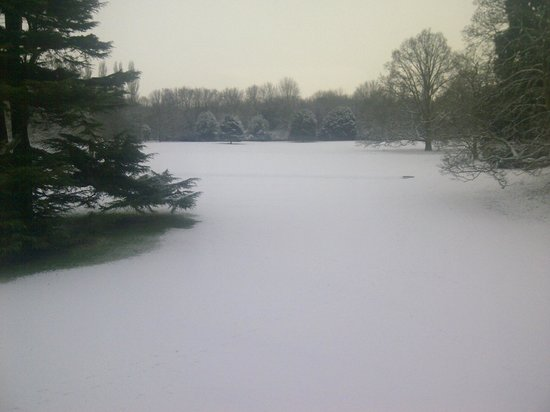 Middlethorpe Hall & Spa:                   View from breakfast room