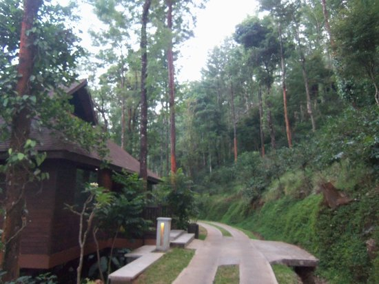 The Tamara Coorg : the cottages