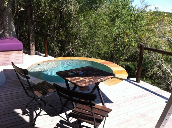 andBeyond Phinda Mountain Lodge :                   The private deck and pool of the suite