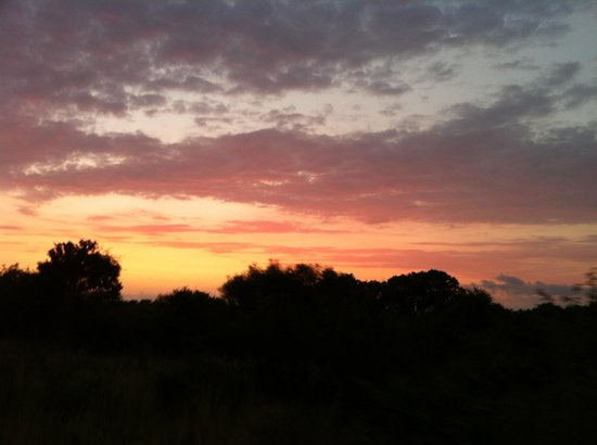 andBeyond Phinda Mountain Lodge:                   sunset on the African bush