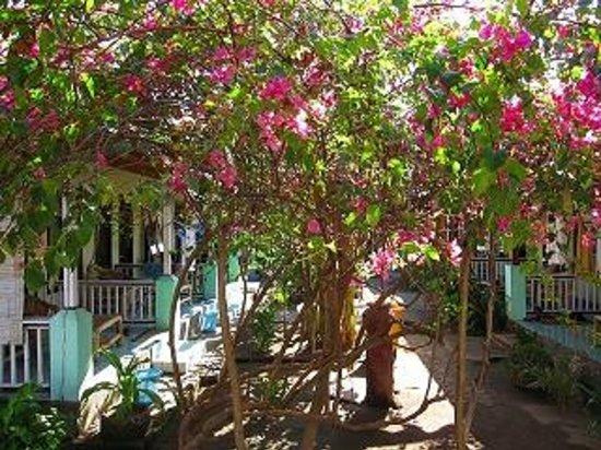 Pondok Twins Garden: rooms