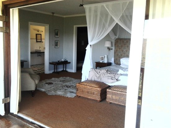 Camp Figtree:                   our room